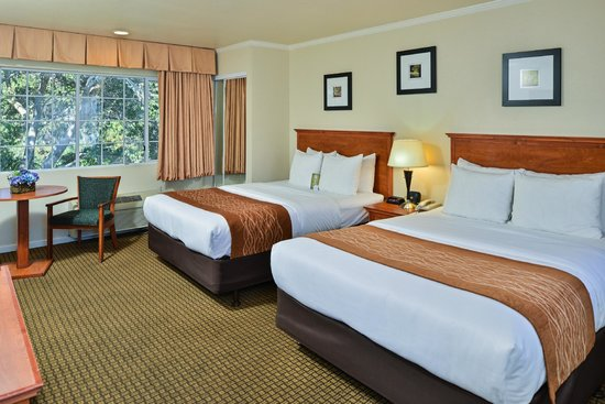 Comfort Inn Monterey by the Sea: Two Queen Beds