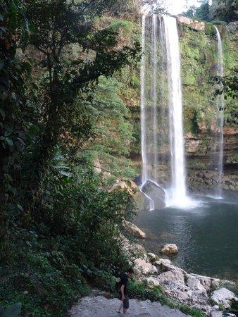 Cascadas de Misol-Ha: vue principale