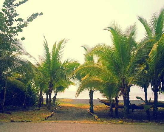 Kaya's Place: Kayas Public Beach