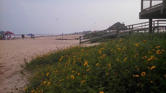 Ocean Village Hotel: Walkway to the beach