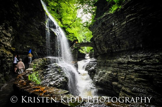 Watkins Glen Gorge Hike June 2014