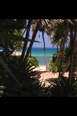 Grand Luxxe at Vidanta Riviera Maya : From Luxxe pool to the beach area...