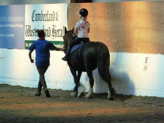 Rookin House Activity Centre: First riding lesson