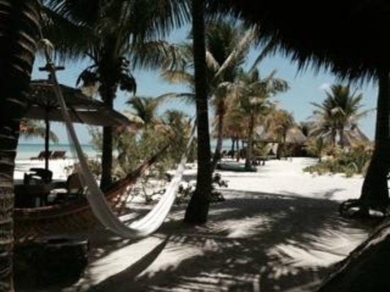Holbox Hotel Mawimbi: Beach view