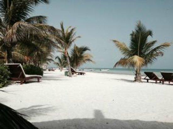 Holbox Hotel Mawimbi: Gorgeous beach!