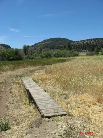 Susanville, Kalifornia: Susan Ranch Park Bridge - Photo by Boo Heisey