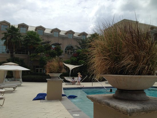 The Ritz-Carlton, Grand Cayman : Dead Looking plants adorn North Side pool