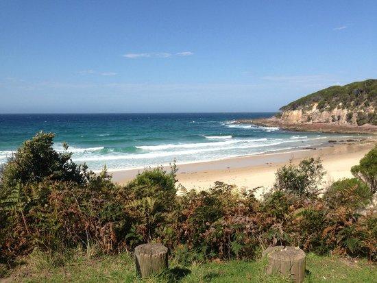 Eden Gateway Holiday Park: local beach, just a short drive (Not Aslings)