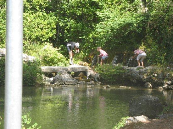 Residence Nemea Les Mazets Du Ventoux: les sources du Grozeau a la sortie du village