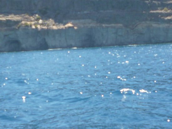 Servatur Puerto Azul: nearby sea caves on boat trip