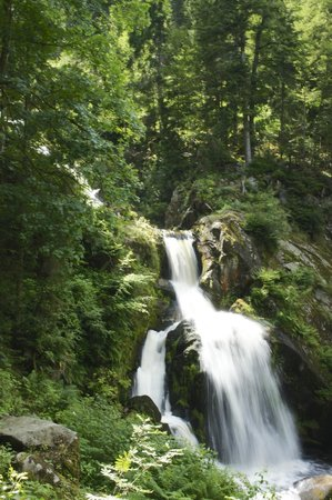 Triberger Waterfall: Triberg waterfalls