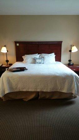 Hampton Inn & Suites Omaha Southwest/La Vista: Our first suite on 2nd floor...
