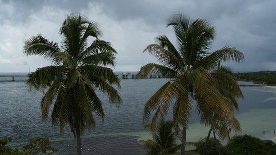 Bahia Honda State Park and Beach: Palms overlooking Gulf Beach