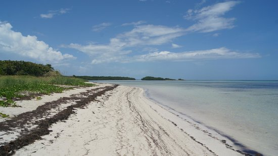 Bahia Honda State Park and Beach: Stretch of beach Atlantic Side