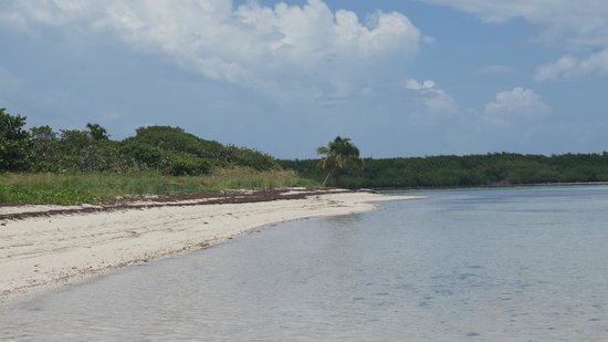 Bahia Honda State Park and Beach: North Side of the Key