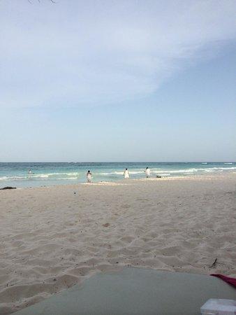 La Zebra Colibri Boutique Hotel: la playa