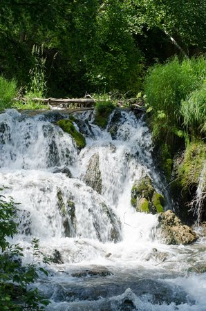 Spearfish Canyon: Need to walk to it