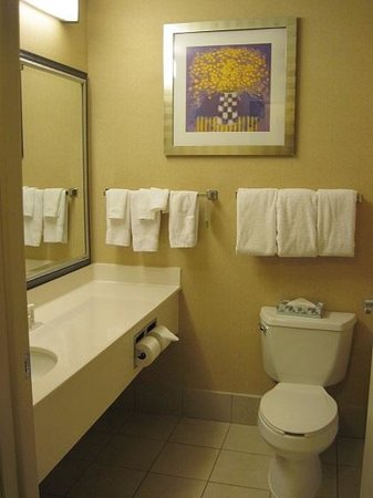Best Western Benton Harbor - St. Joseph: The bathroom was clean