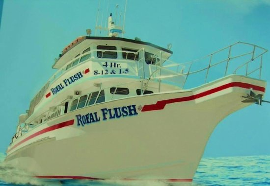 royal flush fishing wildwood all you need to know