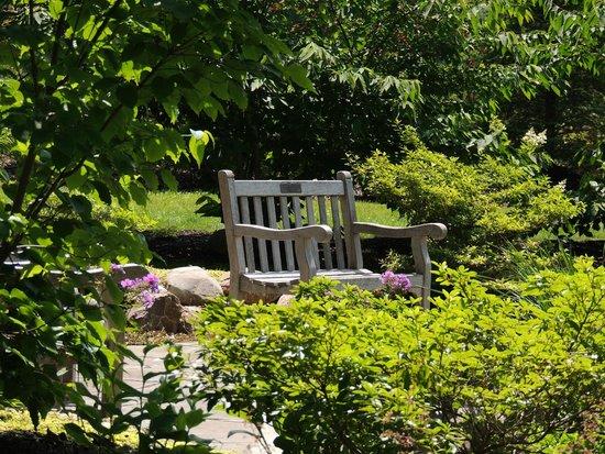 painted elk - Picture of Wellfield Botanic Gardens, Elkhart ...