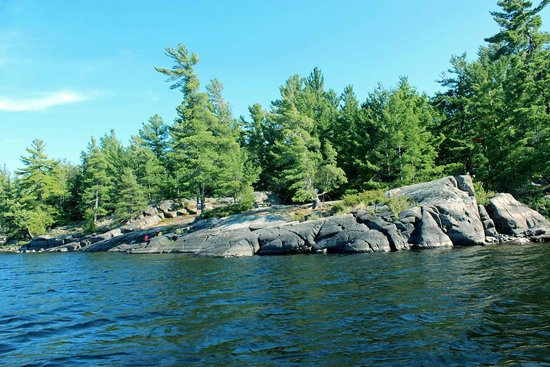 French River Provincial Park: Our campsite