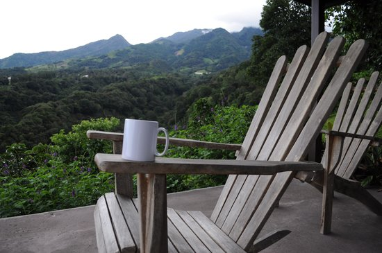 The Guest Suites at Manana Madera Coffee Estate: Coffee with a view!