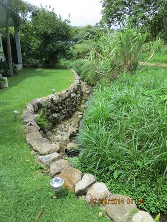 The Haven Hotel and Spa: stream outside our terrace