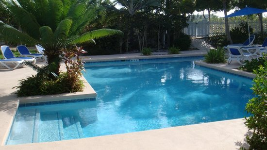 Inn at Grace Bay: Pool Area, nice but too much foliage.