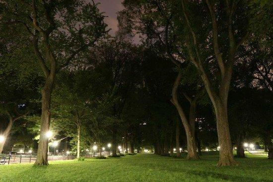 New York City Photo Safari : Central Park