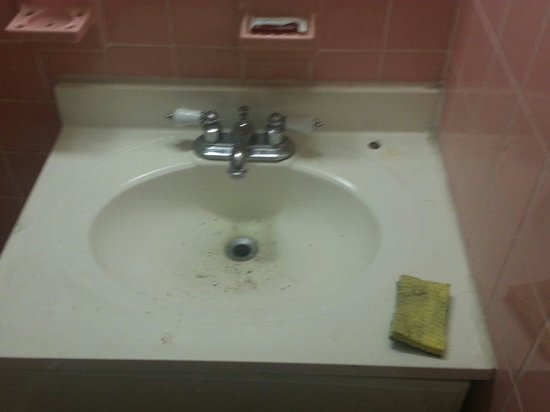 Zinn Inn: Debris in sink, dirty sponge on sink, used bar of soap from who knows who in soap tray