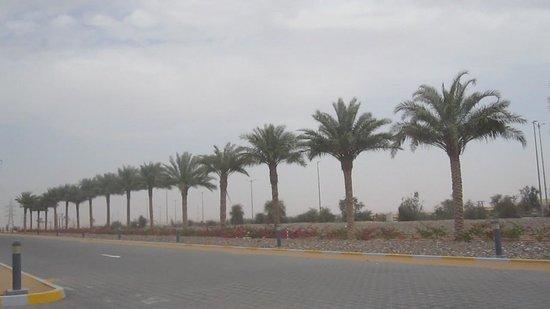 Arabian Adventures: La route vers Al Ain