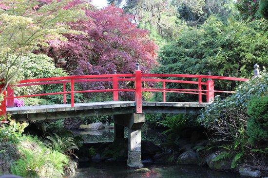 Kubota Garden: Main Bridge