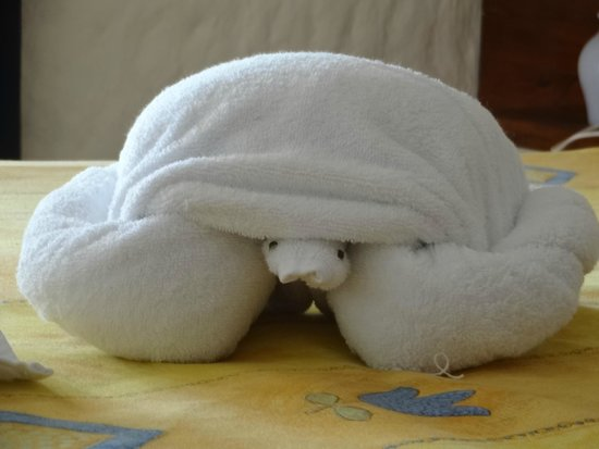 Xaloc Resort: my beautiful towel turtle