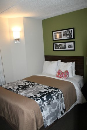 Sleep Inn Salisbury: My bed (and my purse)