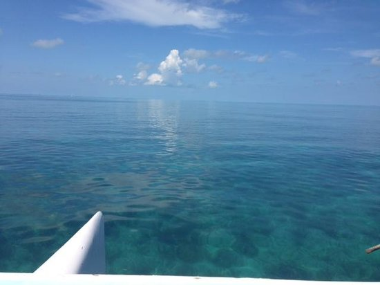 Clearly Unique Charters: awesome water