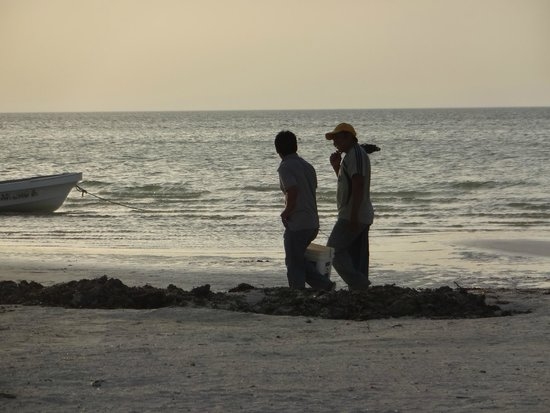 Raices Beach Club and Marina: How many fish did you catch?
