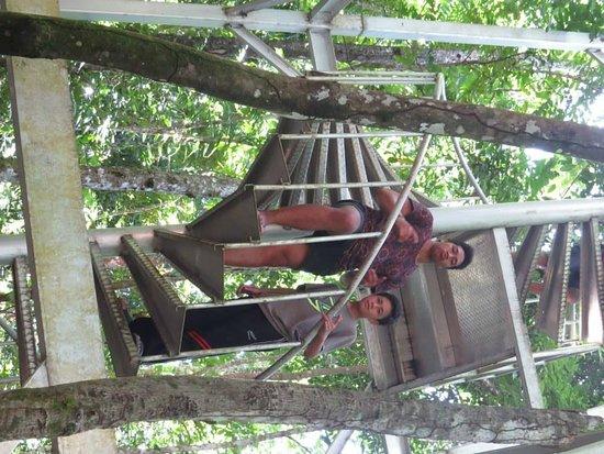 Falealupo Canopy Walk: climbing the stairs