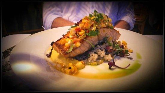 The Compound Restaurant : Salmon
