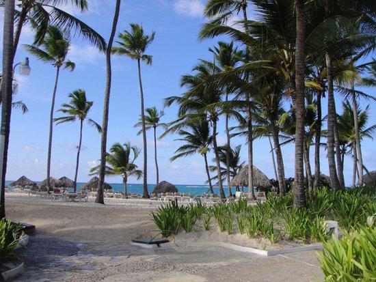 Bavaro Princess All Suites Resort, Spa & Casino: Vista da piscnina p/ a praia
