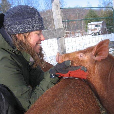 Green Mountain Girls Farm: getlstd_property_photo