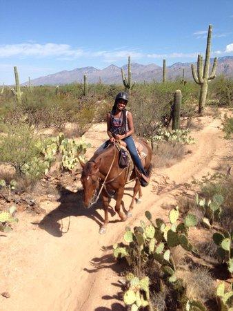 Houston's Horseback Riding: Great experience. I loved Carmen.