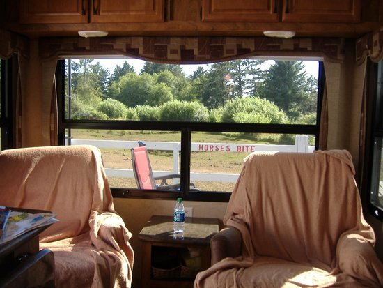 Sea Ranch RV Park & Stables: View from the trailer