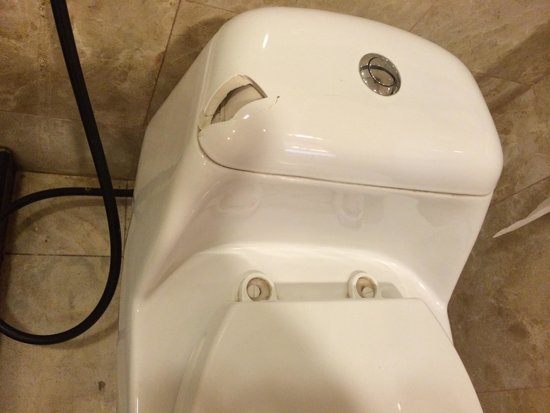 Pulai Springs Resort: Broken toilet