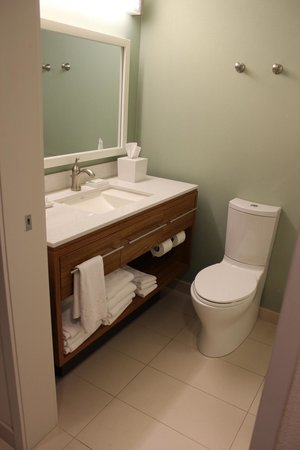 Home2 Suites by Hilton Philadelphia - Convention Center, PA : Bathroom