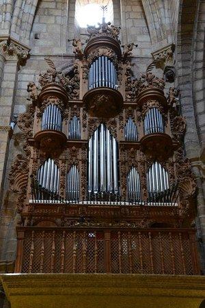 Basilica de San Vicente : Orgao no interior da Basilica