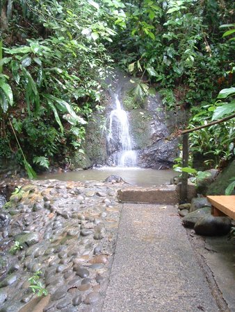Tree Houses Hotel Costa Rica: Waterfall at Tree Houses Hotel
