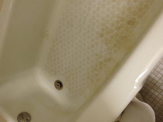 Americas Best Value Inn Albert Lea: Bathtub they didn't clean