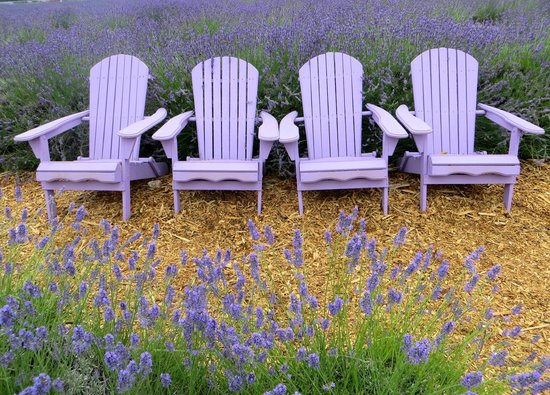 Lavender By The Bay: Take a seat and stay awhile!