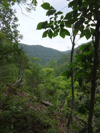 Pipestem Resort State Park: View from the steep part of the trail.