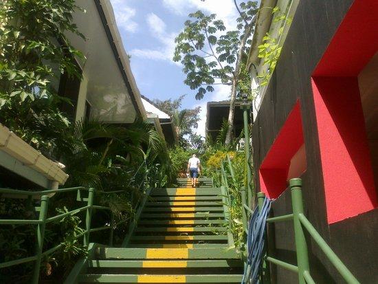 Hotel Mandarina: Escalinata